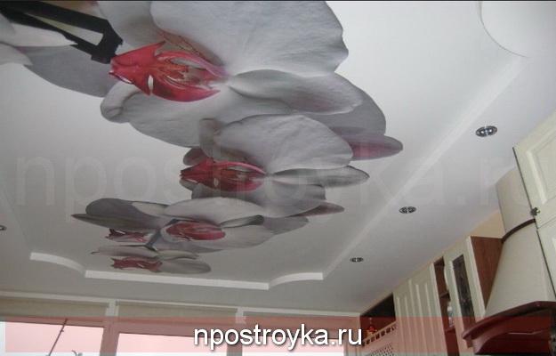 Натяжные стены 3d фото